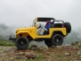 chris-79-fj40